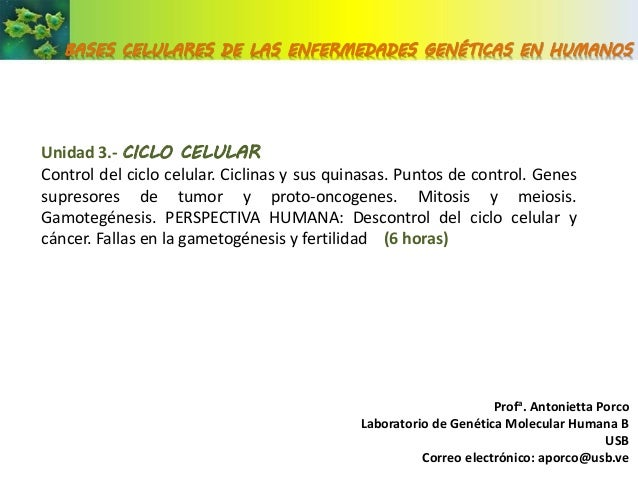BASES CELULARES DE LAS ENFERMEDADES GENÉTICAS EN HUMANOSUnidad 3.- CICLO CELULARControl del ciclo celular. Ciclinas y sus ...