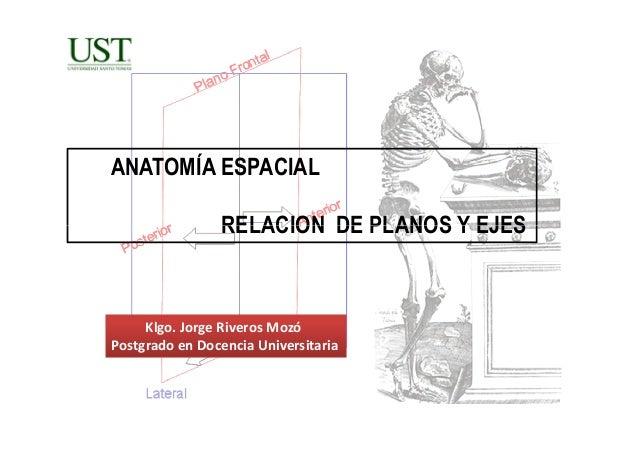Clase 1 Introducción Anatomía Macroscopica