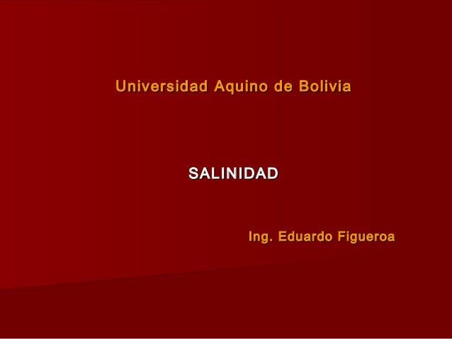 Universidad Aquino de BoliviaUniversidad Aquino de Bolivia SALINIDADSALINIDAD Ing. Eduardo FigueroaIng. Eduardo Figueroa