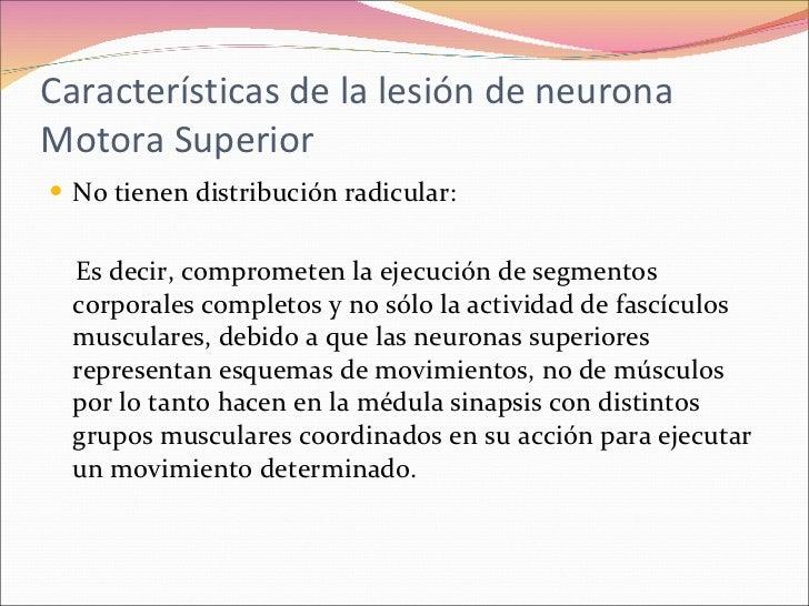 Clase 10 Lesión de Neurona Motora Superior e Inferior