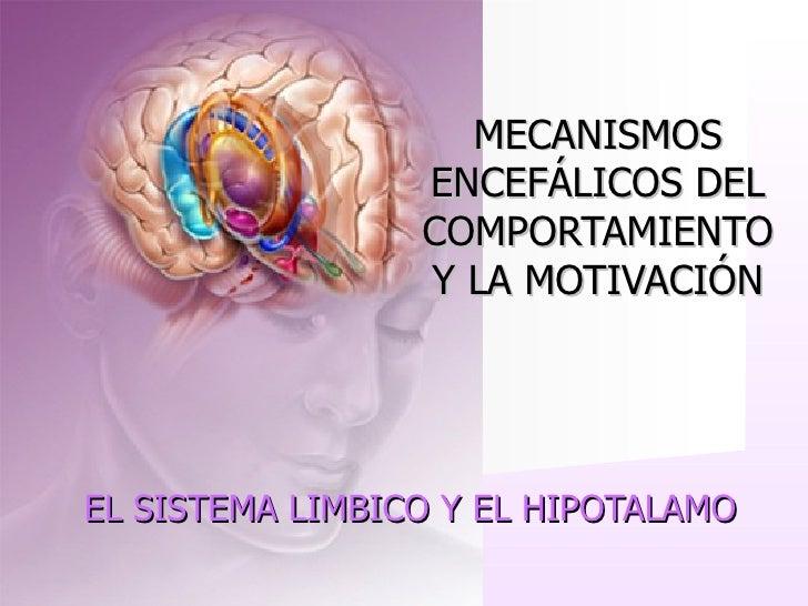 MECANISMOS                  ENCEFÁLICOS DEL                  COMPORTAMIENTO                  Y LA MOTIVACIÓN     EL SISTEM...