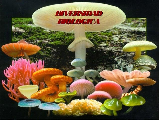 DIVERSIDADDIVERSIDAD BIOLOGICABIOLOGICA
