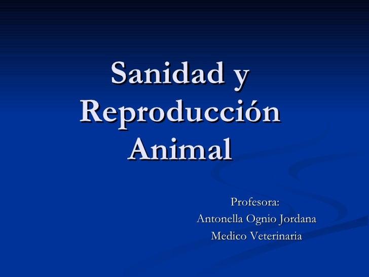 Sanidad y Reproducción  Animal  Profesora:  Antonella Ognio Jordana Medico Veterinaria