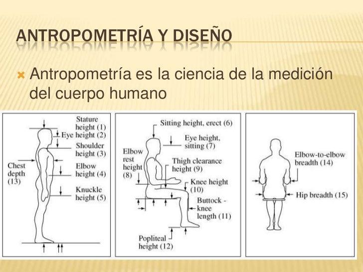 Clase 12 capitulo 5 parte 1 for Medidas ergonomicas del cuerpo humano