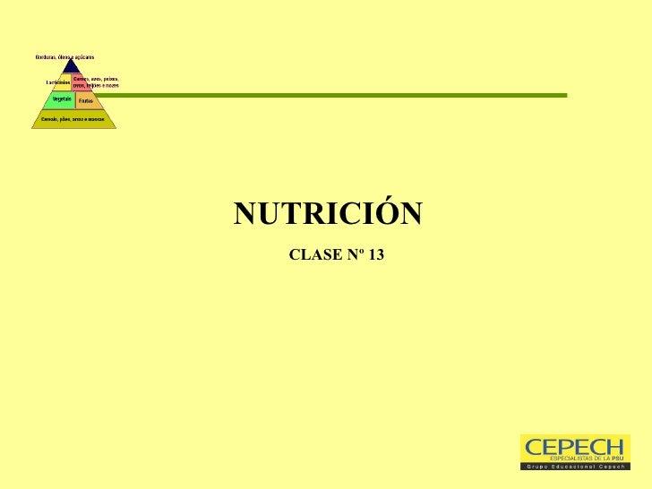 NUTRICIÓN   CLASE Nº 13