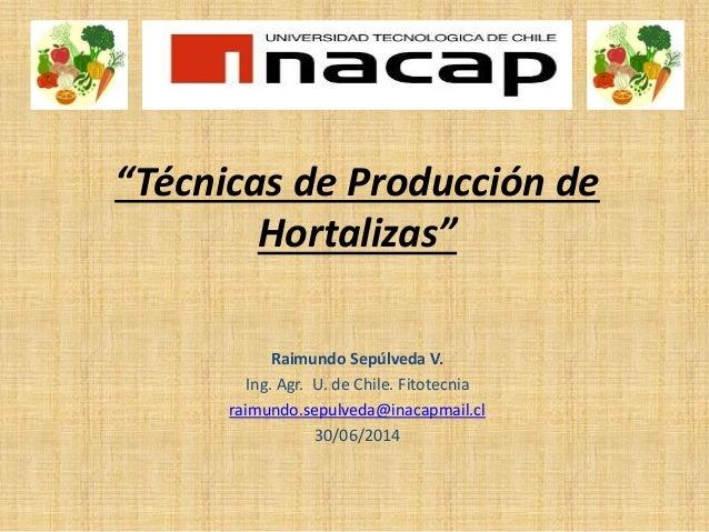 """Técnicas de Producción de Hortalizas"" Raimundo Sepúlveda V. Ing. Agr. U. de Chile. Fitotecnia raimundo.sepulveda@inacapma..."