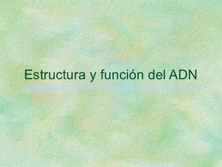 Estructura y función del ADN