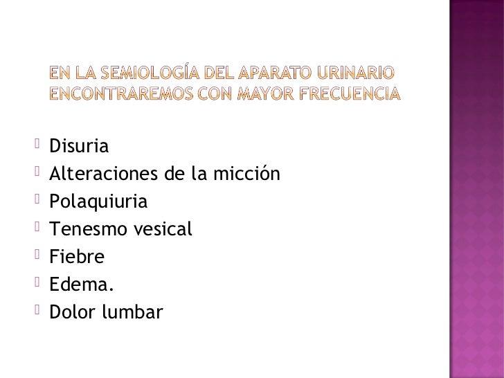 Clase 1 aparato urinario
