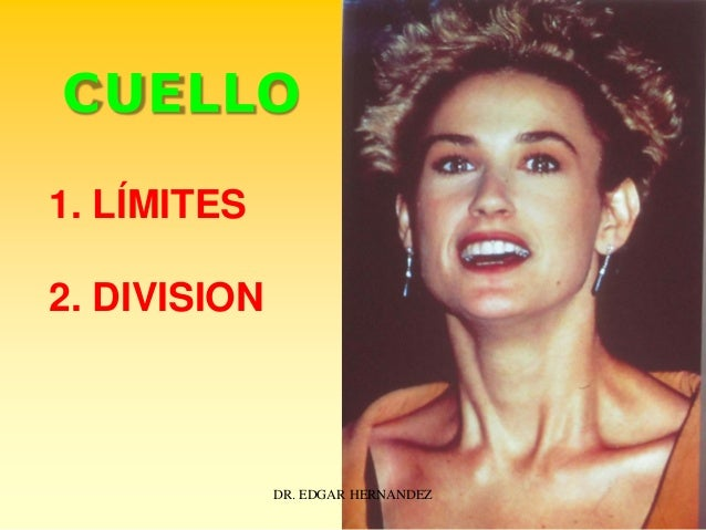 CUELLO 1. LÍMITES 2. DIVISION  DR. EDGAR HERNANDEZ