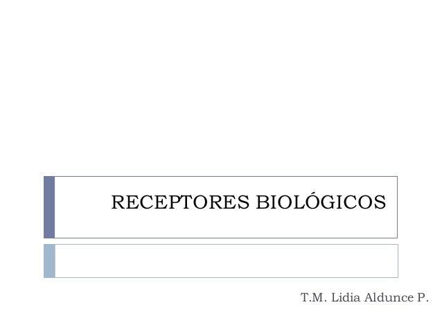 RECEPTORES BIOLÓGICOS T.M. Lidia Aldunce P.