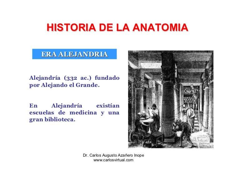 Contemporáneo Anatomía En La Escuela De Medicina Inspiración ...
