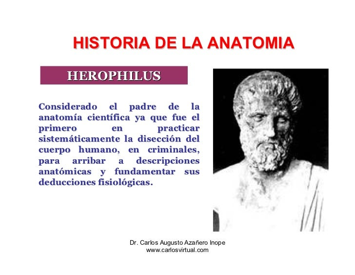 historia-de-la-anatomia-26-728.jpg?cb=1236710088
