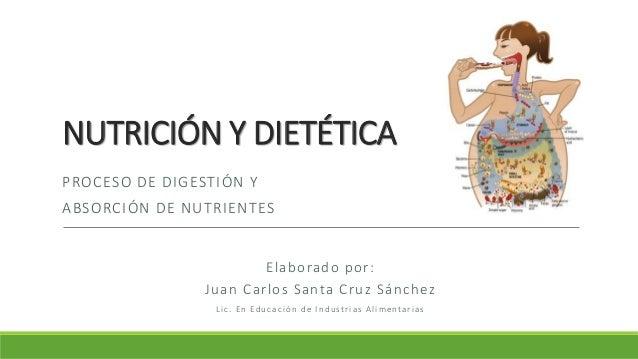 NUTRICIÓN Y DIETÉTICA PROCESO DE DIGESTIÓN Y ABSORCIÓN DE NUTRIENTES Elaborado por: Juan Carlos Santa Cruz Sánchez L i c ....