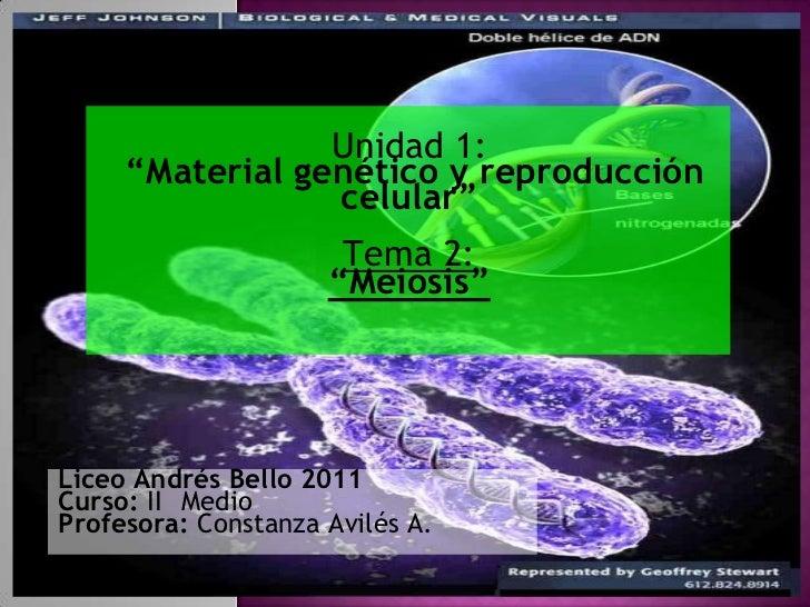 """Unidad 1:""""Material genético y reproducción celular""""<br />Tema 2:<br />""""Meiosis""""<br />Liceo Andrés Bello 2011<br />Curso: I..."""