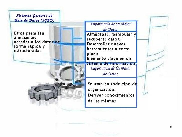 Sistemas Gestores deBase de Datos (SGBD)                          Importancia de las Bases                                ...