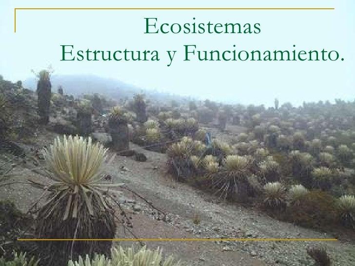 Ecosistemas Estructura y Funcionamiento.