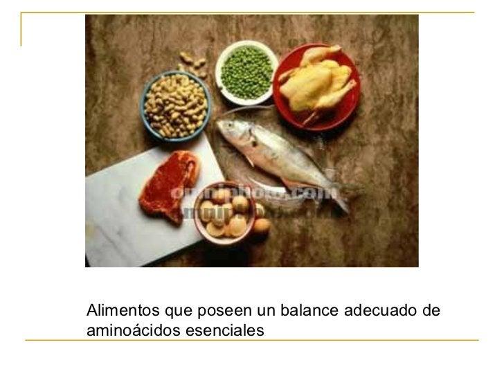 Alimentos que poseen un balance adecuado de aminoácidos esenciales