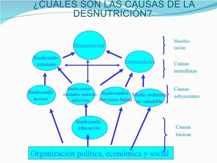 Malnutrición por micronutrientes Slide 3