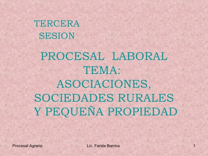 PROCESAL  LABORAL TEMA:  ASOCIACIONES, SOCIEDADES RURALES  Y PEQUEÑA PROPIEDAD TERCERA SESION