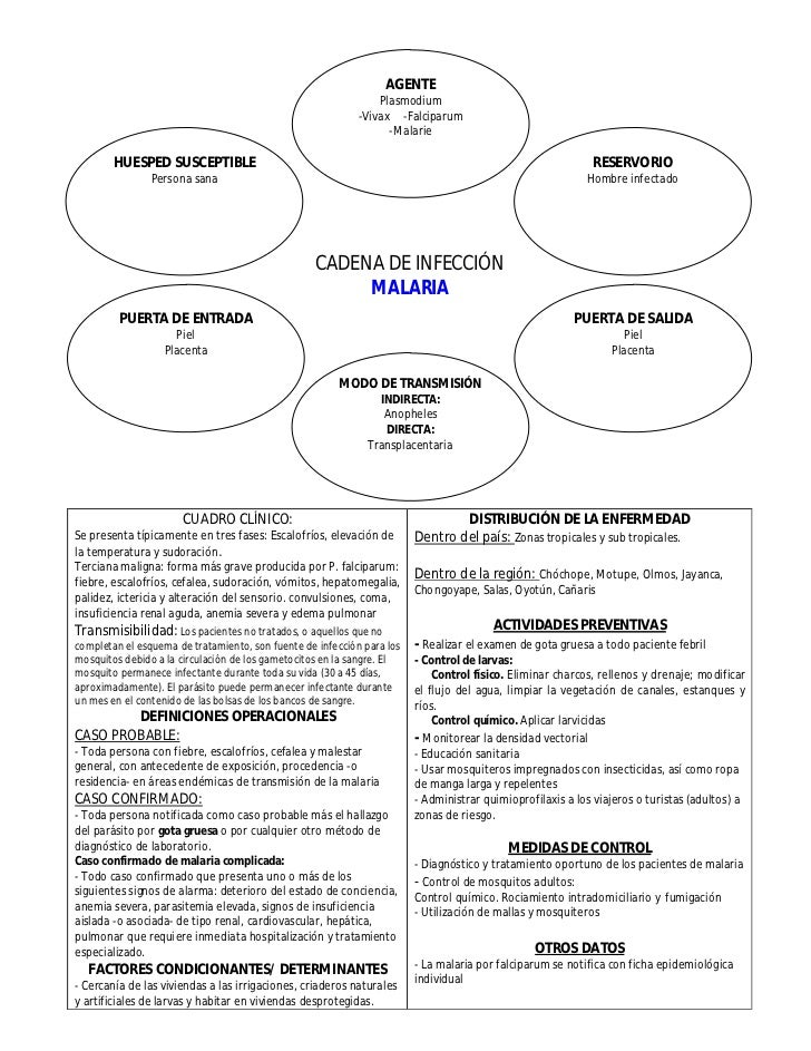Cadenas Epidemiológicas de Principales Enfermedades Slide 2