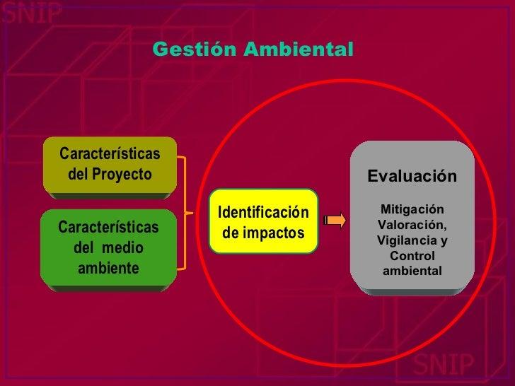 Gestión Ambiental Características del Proyecto Características del  medio ambiente Identificación de impactos Evaluación M...