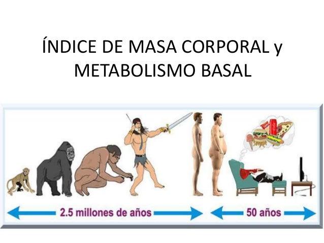 ÍNDICE DE MASA CORPORAL y METABOLISMO BASAL