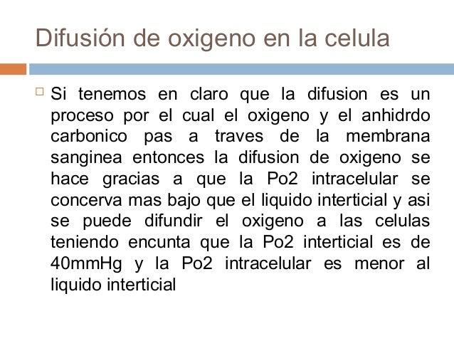 Difusión de oxigeno en la celula Si tenemos en claro que la difusion es unproceso por el cual el oxigeno y el anhidrdocar...