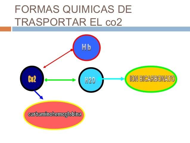Curva DE DISOCIACION DE LAHEMOGLOBINA Es el mecanismo por el cual se puede explicarcuando la sangre esta cargada de Co2 s...
