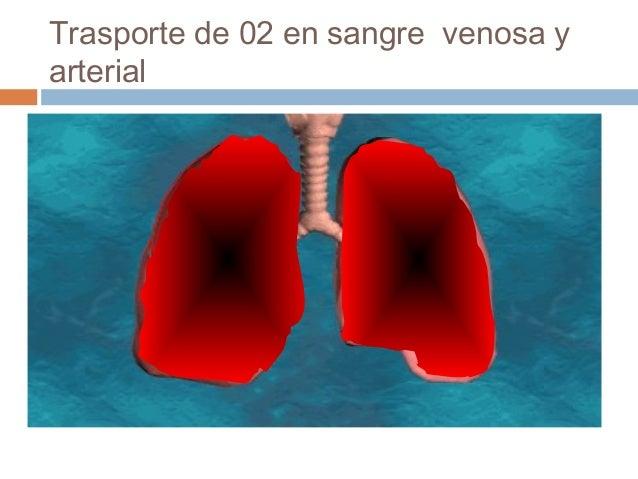 Trasporte de 02 en sangre venosa yarterial