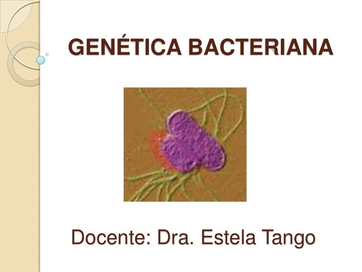 GENÉTICA BACTERIANADocente: Dra. Estela Tango