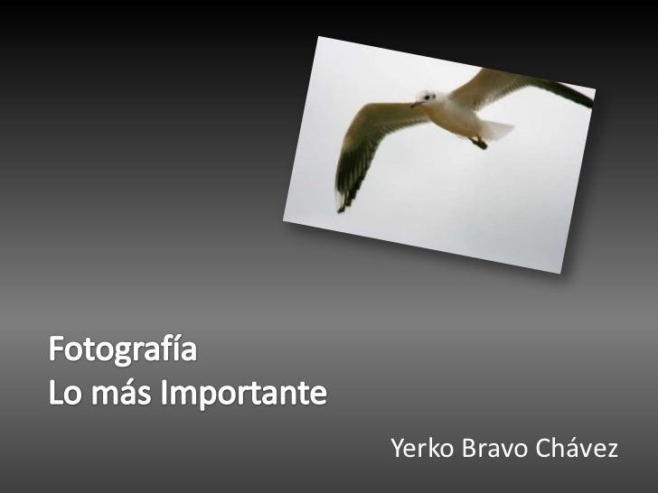 FotografíaLo más Importante<br />Yerko Bravo Chávez<br />