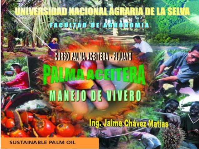 Clase 4 manejo de vivero de palma for Manejo de viveros pdf
