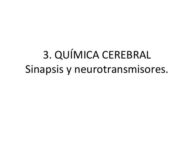 3. QUÍMICA CEREBRAL Sinapsis y neurotransmisores.