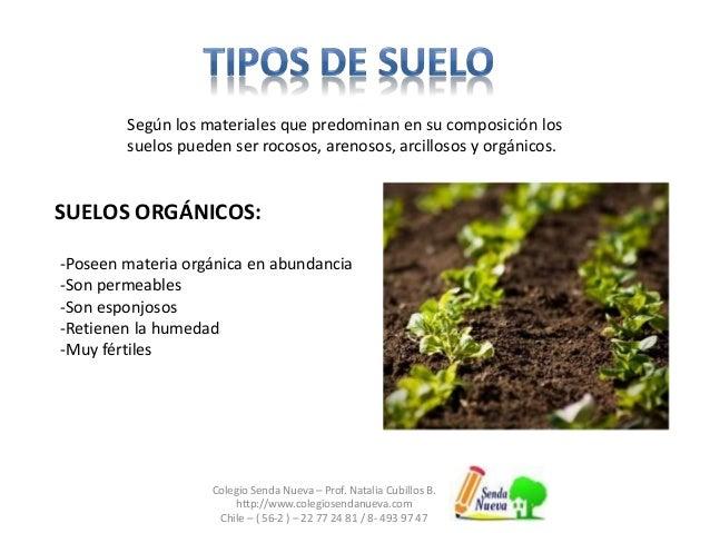 Clase5 suelo for Cuales son las caracteristicas del suelo
