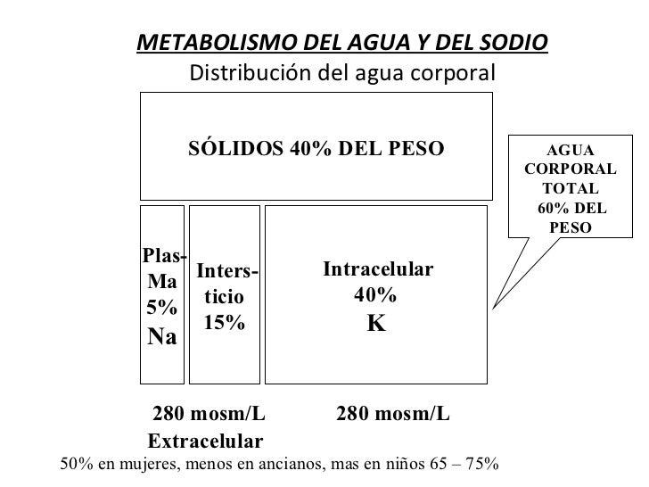 METABOLISMO DEL AGUA Y DEL SODIO            Distribución del agua corporal                SÓLIDOS 40% DEL PESO            ...