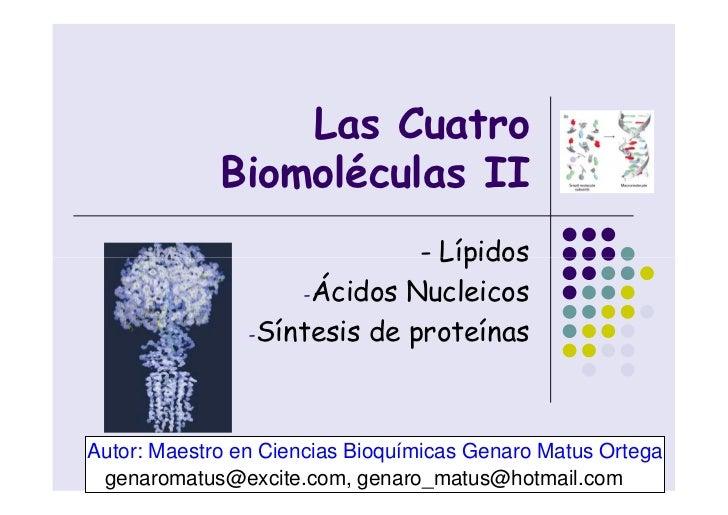 Las Cuatro                                      x                                  . m             Biomoléculas II   m    ...