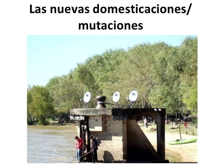 Las nuevas domesticaciones/ mutaciones