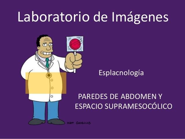 Laboratorio de Imágenes Esplacnología PAREDES DE ABDOMEN Y ESPACIO SUPRAMESOCÓLICO