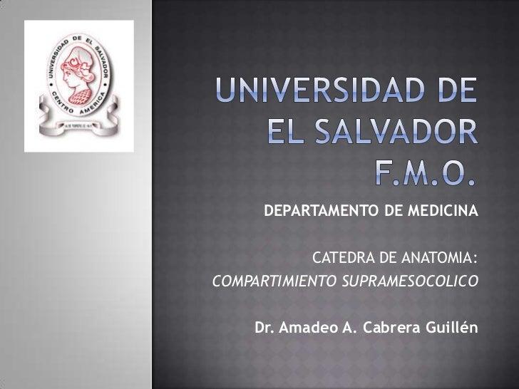 DEPARTAMENTO DE MEDICINA           CATEDRA DE ANATOMIA:COMPARTIMIENTO SUPRAMESOCOLICO    Dr. Amadeo A. Cabrera Guillén
