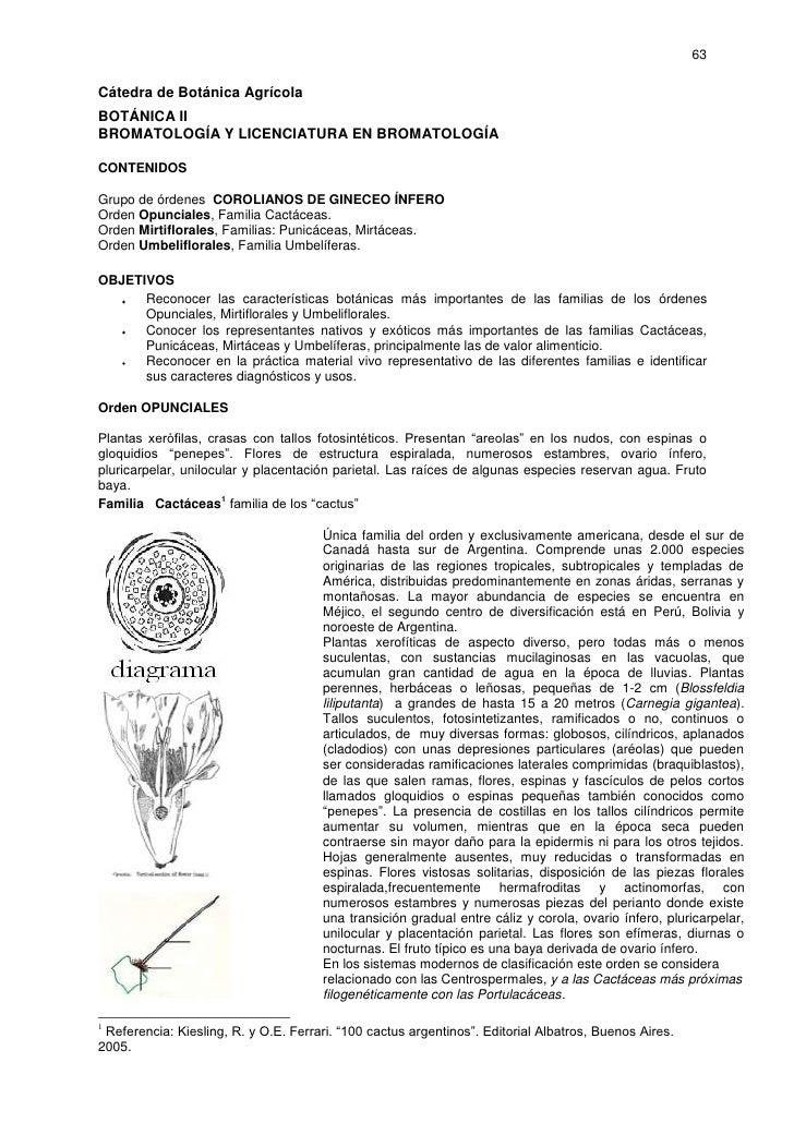 63  Cátedra de Botánica Agrícola BOTÁNICA II BROMATOLOGÍA Y LICENCIATURA EN BROMATOLOGÍA  CONTENIDOS  Grupo de órdenes COR...
