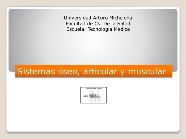 Universidad Arturo Michelena Facultad de Cs. De la Salud Escuela: Tecnología Medica Sistemas óseo, articular y muscular
