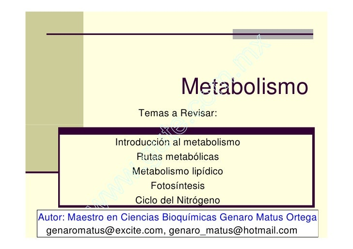 Clase 7 Metabolismo, TermodináMica Y CinéTica EnzimáTica