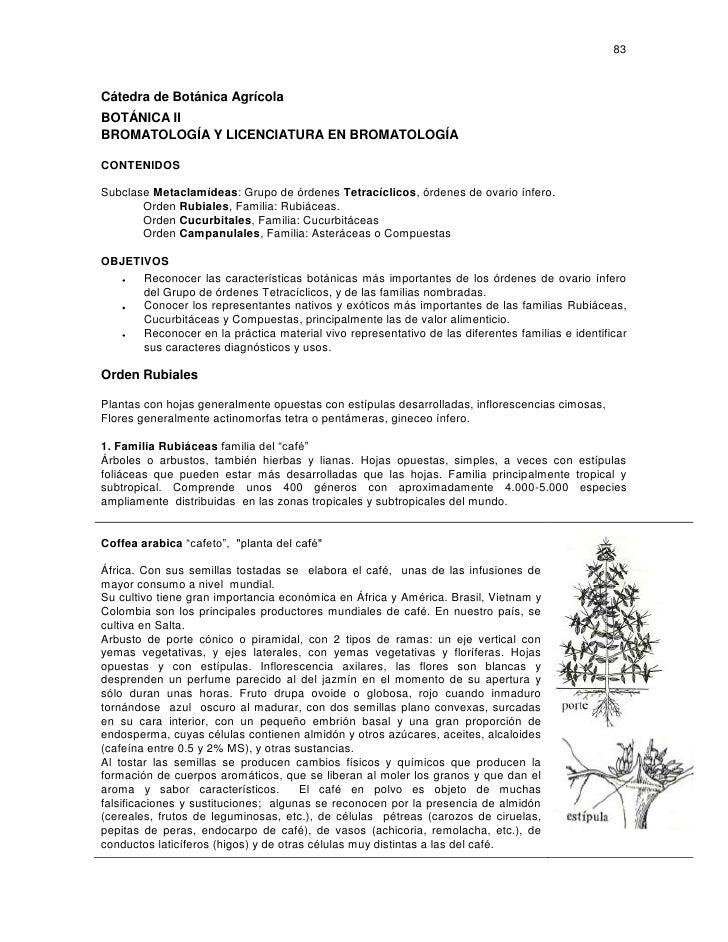 83    Cátedra de Botánica Agrícola BOTÁNICA II BROMATOLOGÍA Y LICENCIATURA EN BROMATOLOGÍA  CONTENIDOS  Subclase Metaclamí...