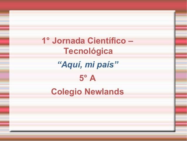 """1° Jornada Científico – Tecnológica """"Aquí, mi país"""" 5° A Colegio Newlands"""