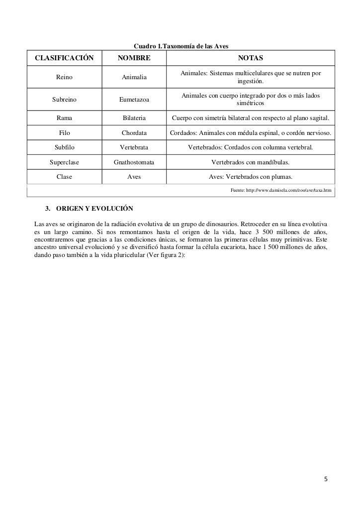 medicamento para acido urico alto es malo el pepino para el acido urico cardo mariano e acido urico