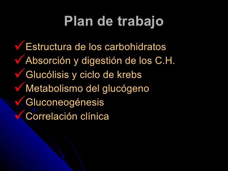 Plan de trabajo <ul><li>Estructura de los carbohidratos </li></ul><ul><li>Absorción y digestión de los C.H. </li></ul><ul>...