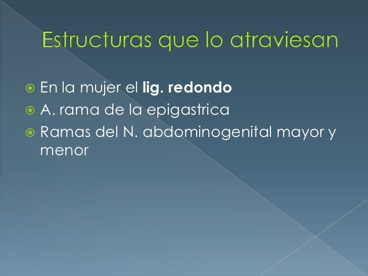 Estructuras que lo atraviesan<br />En la mujer el lig. redondo<br />A. rama de la epigastrica<br />Ramas del N. abdominoge...