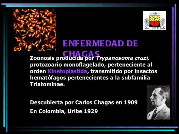 ENFERMEDAD DE CHAGAS Zoonosis producida por  Trypanosoma cruzi , protozoario monoflagelado, perteneciente al orden  Kineto...