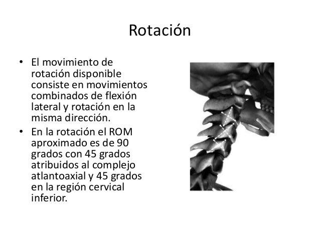 Clase Columna Cervical