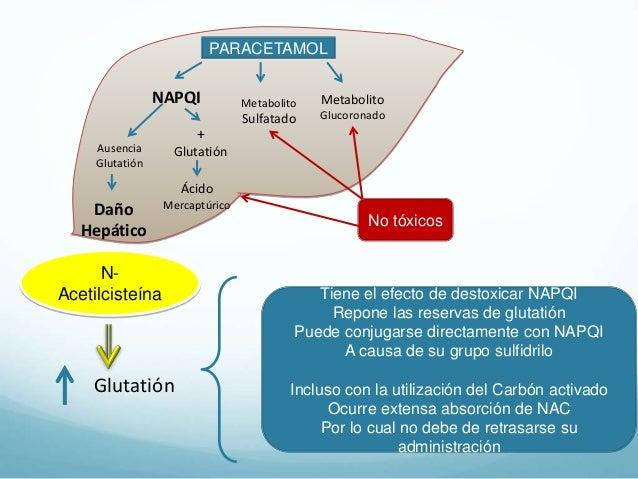 Los nutrientes y el metabolismo